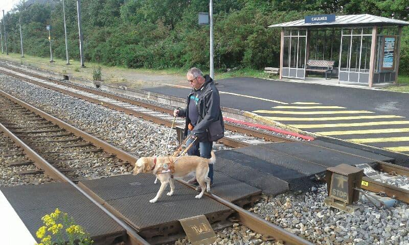 Se rendre à la gare de Caulnes et prendre le train n'est plus un problème pour Michel qui a gagné en autonomie grâce à Néva, son chien guide.