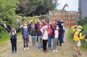 Le nourrissage des girafes : un temps fort de la colonie apprenante Apprenti soigneur à Branféré.